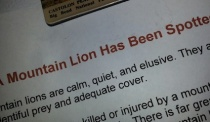 mountain lion note